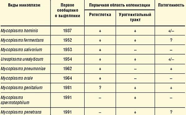 Классификация микоплазмоза