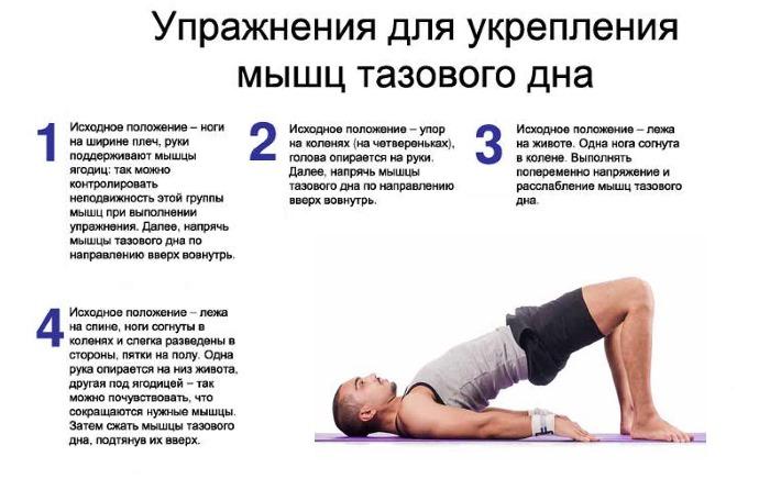 Упражнения для таза для от импотенции