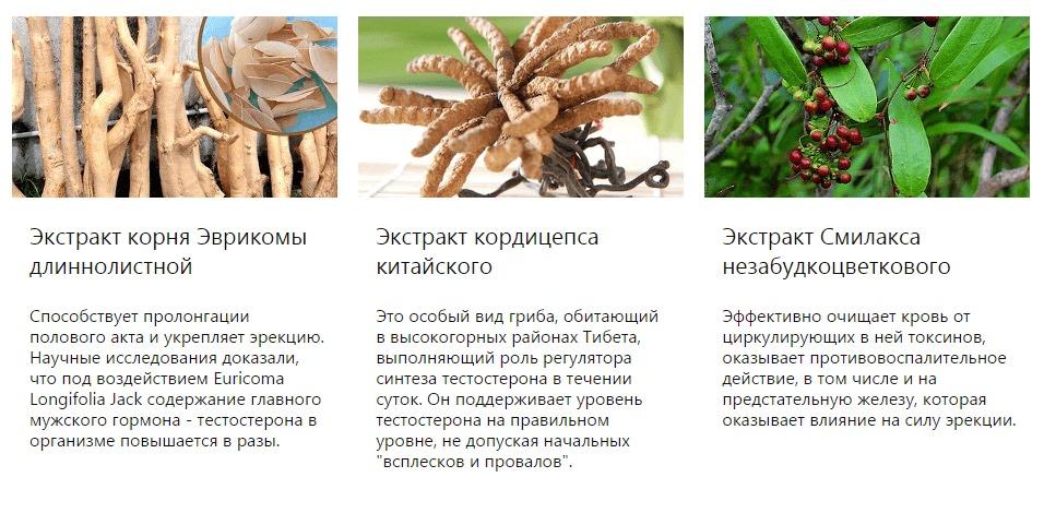 Свойства растительных компонентов препарата