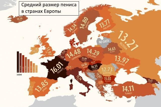 Среднестатистические размеры члена в Европе
