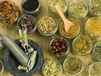 Лекарственные травы от импотенции