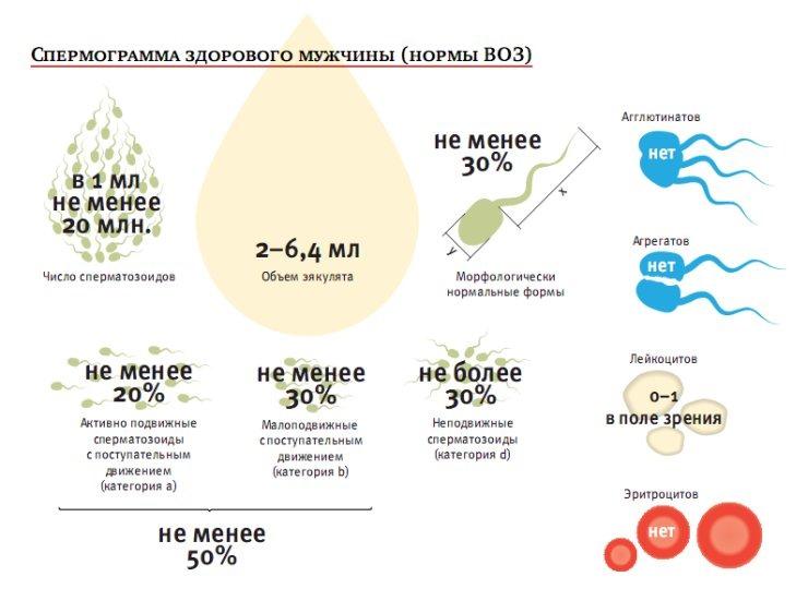 Повышенная вязкость спермы и выкидыш