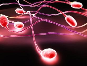 Причины низкого количества спермы