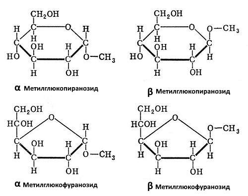 Химический состав коры осины