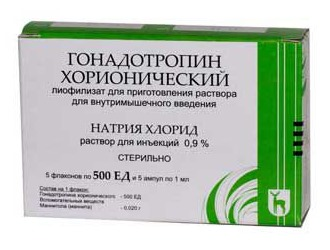Для лечения используют хорионический гонадотропин