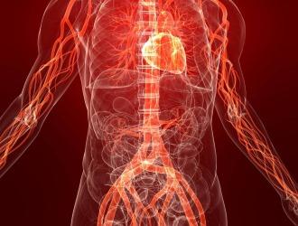 Физиотерапия стимулирует кровообращение