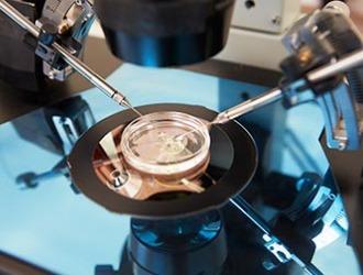 Что такое тератозооспермия?